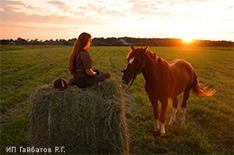 Отдых для души! Катание на лошадях и пони, фотосессия и Иппо-фитнес от конного клуба «Арсенал» со скидкой до 50%