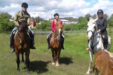 Незабываемые конные прогулки от студии верховой езды «Стиль» со скидкой до 50%!